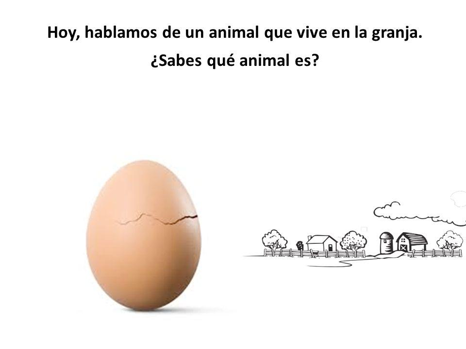 Hoy, hablamos de un animal que vive en la granja. ¿Sabes qué animal es?