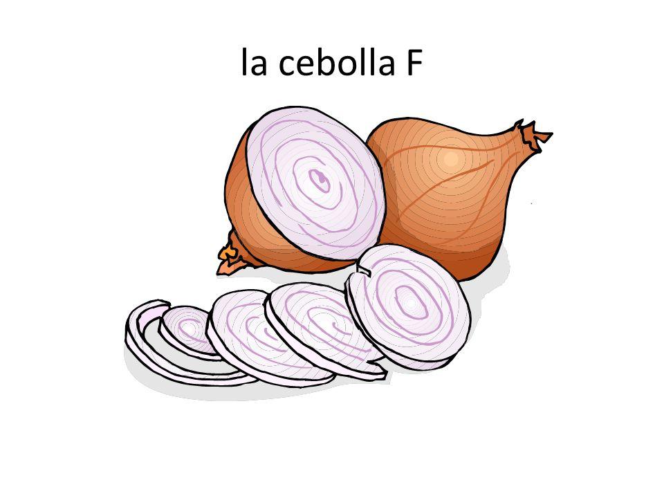 la cebolla F