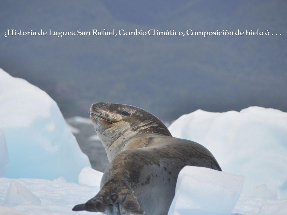 ¿ Historia de Laguna San Rafael, Cambio Climático, Composición de hielo ó...