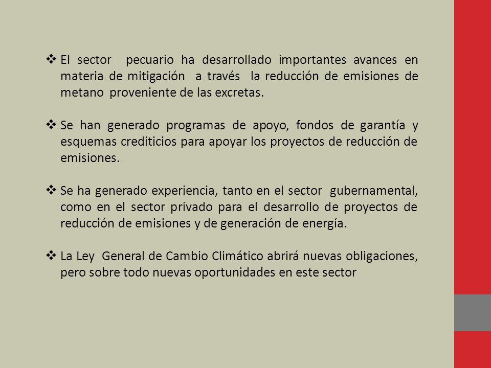 El sector pecuario ha desarrollado importantes avances en materia de mitigación a través la reducción de emisiones de metano proveniente de las excret