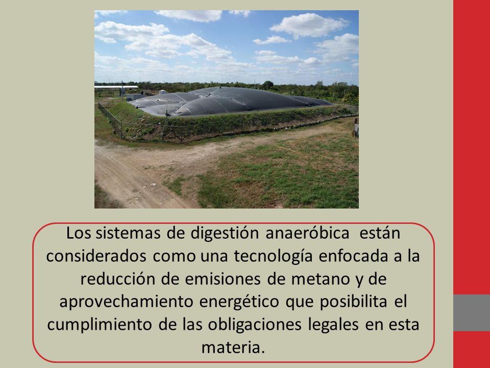 Los sistemas de digestión anaeróbica están considerados como una tecnología enfocada a la reducción de emisiones de metano y de aprovechamiento energé