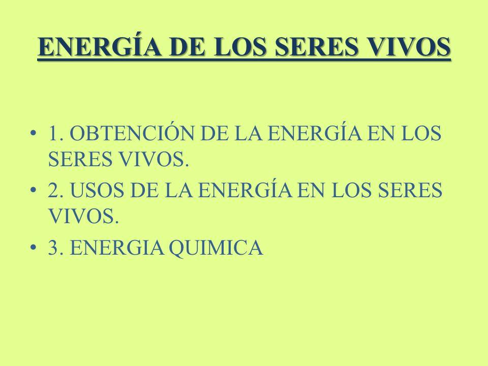 ENERGÍA DE LOS SERES VIVOS 1. OBTENCIÓN DE LA ENERGÍA EN LOS SERES VIVOS. 2. USOS DE LA ENERGÍA EN LOS SERES VIVOS. 3. ENERGIA QUIMICA