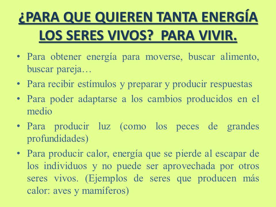 ¿PARA QUE QUIEREN TANTA ENERGÍA LOS SERES VIVOS.PARA VIVIR.
