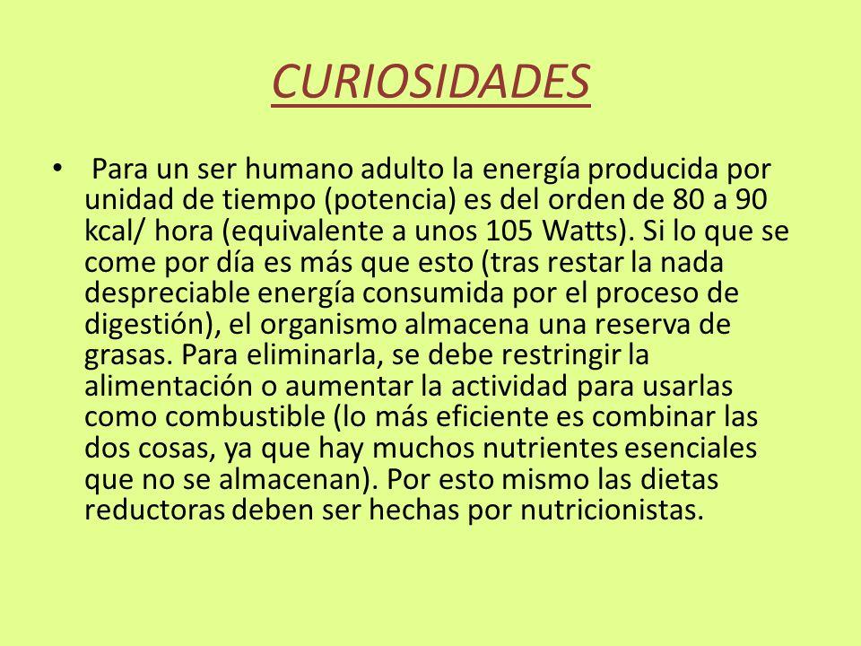 CURIOSIDADES Para un ser humano adulto la energía producida por unidad de tiempo (potencia) es del orden de 80 a 90 kcal/ hora (equivalente a unos 105 Watts).
