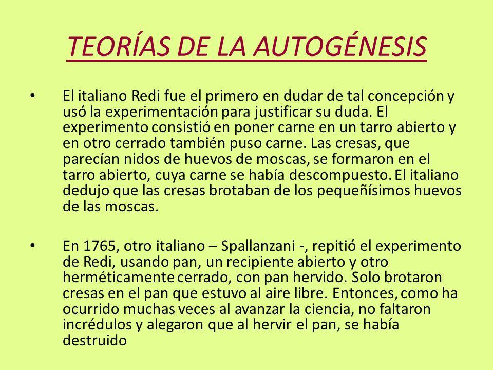 TEORÍAS DE LA AUTOGÉNESIS El italiano Redi fue el primero en dudar de tal concepción y usó la experimentación para justificar su duda. El experimento