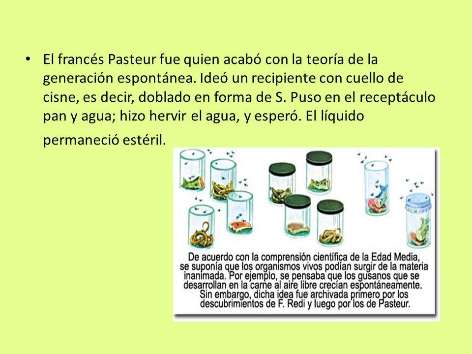 El francés Pasteur fue quien acabó con la teoría de la generación espontánea. Ideó un recipiente con cuello de cisne, es decir, doblado en forma de S.