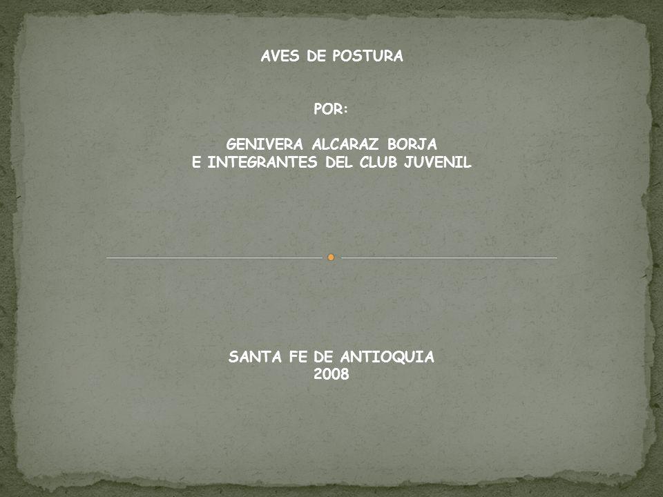 AVES DE POSTURA POR: GENIVERA ALCARAZ BORJA E INTEGRANTES DEL CLUB JUVENIL SANTA FE DE ANTIOQUIA 2008