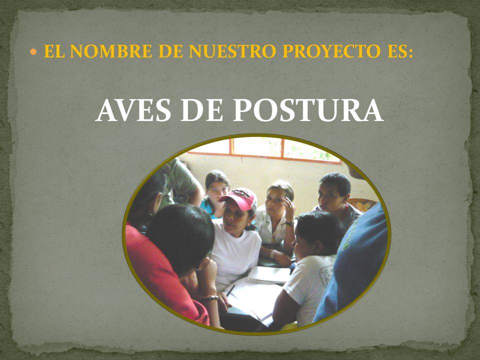 EL NOMBRE DE NUESTRO PROYECTO ES: AVES DE POSTURA