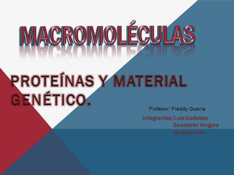 Profesor: Freddy Guerra