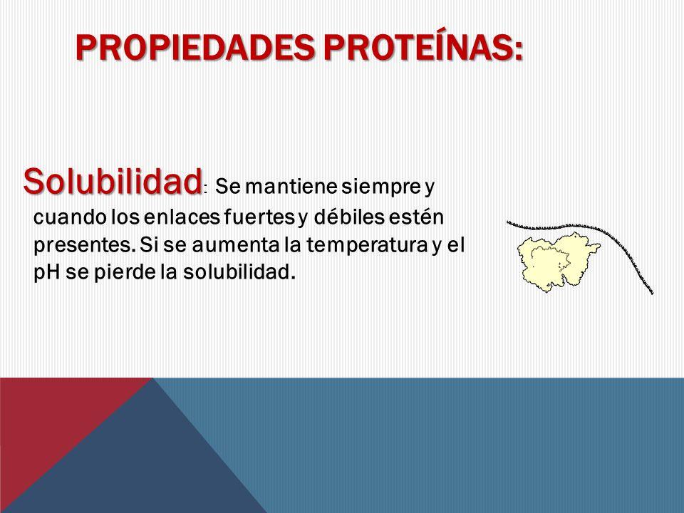 La función de estas proteínas es llevar sustancias a través de todo el organismo donde son requeridas.