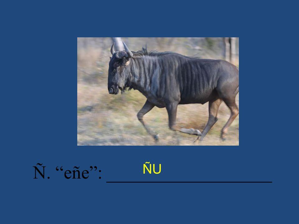 Ñ. eñe: __________________ ÑU