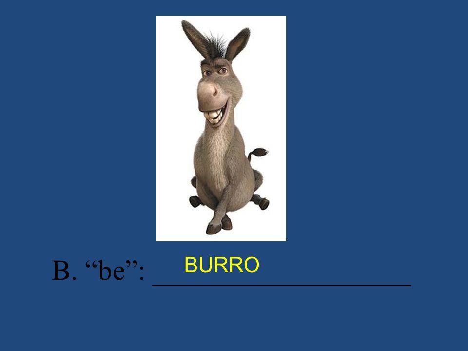 B. be: __________________ BURRO