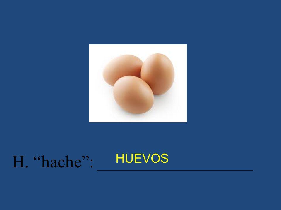 H. hache: __________________ HUEVOS