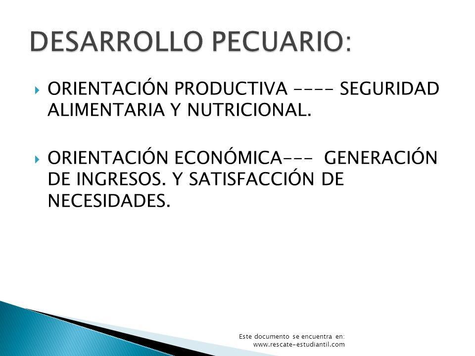 ORIENTACIÓN PRODUCTIVA ---- SEGURIDAD ALIMENTARIA Y NUTRICIONAL. ORIENTACIÓN ECONÓMICA--- GENERACIÓN DE INGRESOS. Y SATISFACCIÓN DE NECESIDADES. Este