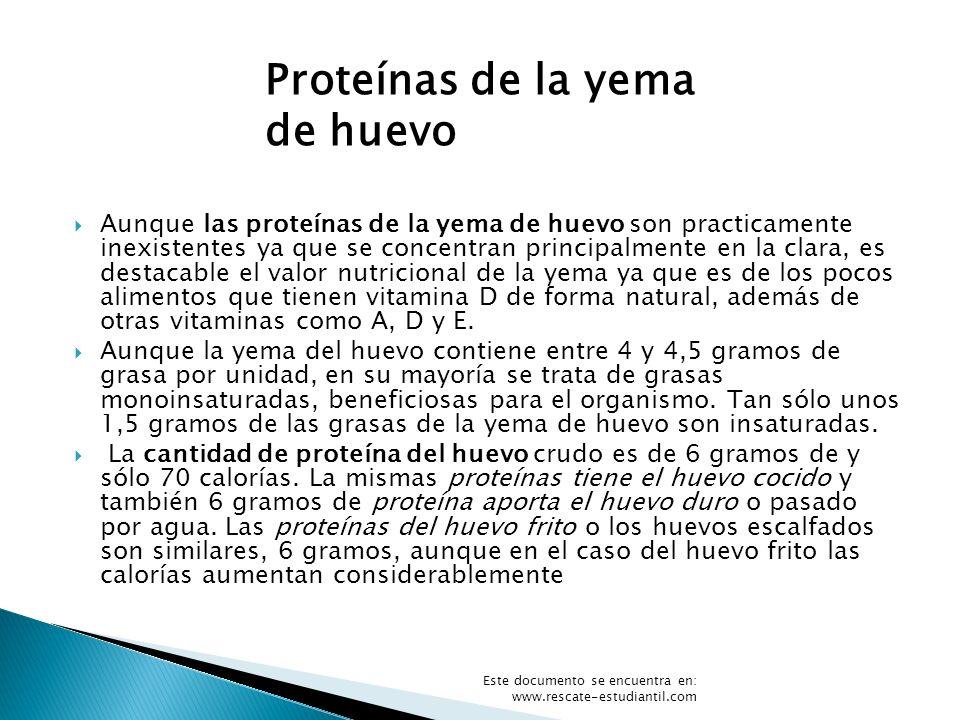 Aunque las proteínas de la yema de huevo son practicamente inexistentes ya que se concentran principalmente en la clara, es destacable el valor nutric
