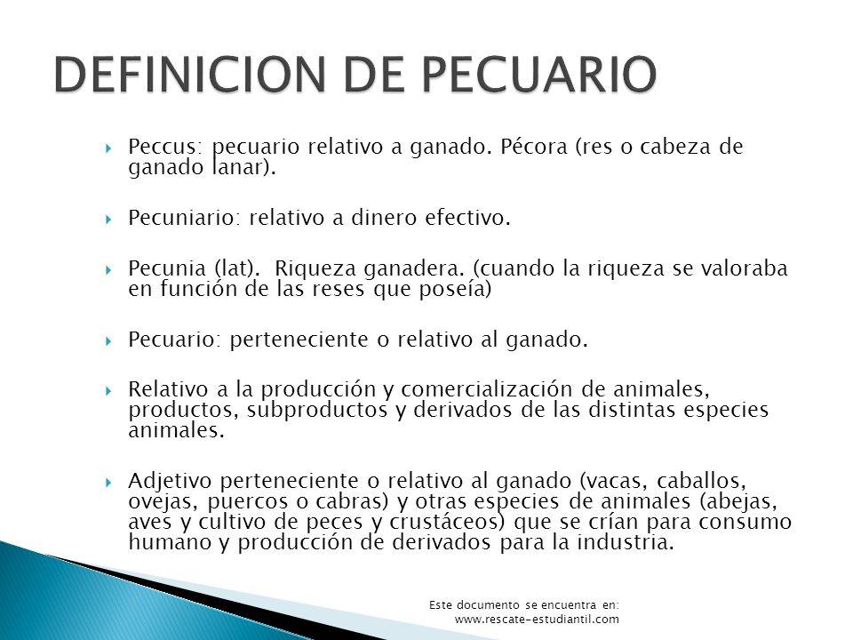 Peccus: pecuario relativo a ganado. Pécora (res o cabeza de ganado lanar). Pecuniario: relativo a dinero efectivo. Pecunia (lat). Riqueza ganadera. (c