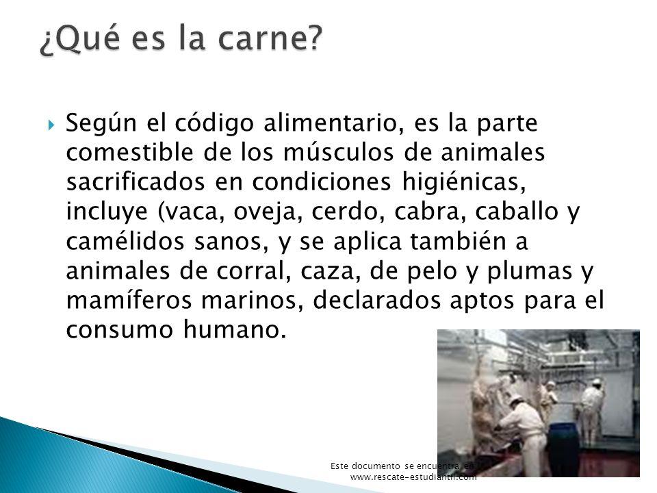 Según el código alimentario, es la parte comestible de los músculos de animales sacrificados en condiciones higiénicas, incluye (vaca, oveja, cerdo, c
