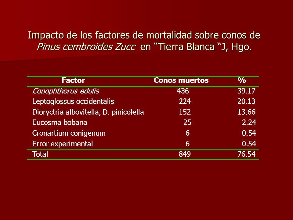 Impacto de los factores de mortalidad sobre conos de Pinus cembroides Zucc en Tierra Blanca J, Hgo. Factor Conos muertos% Conophthorus edulis 43639.17