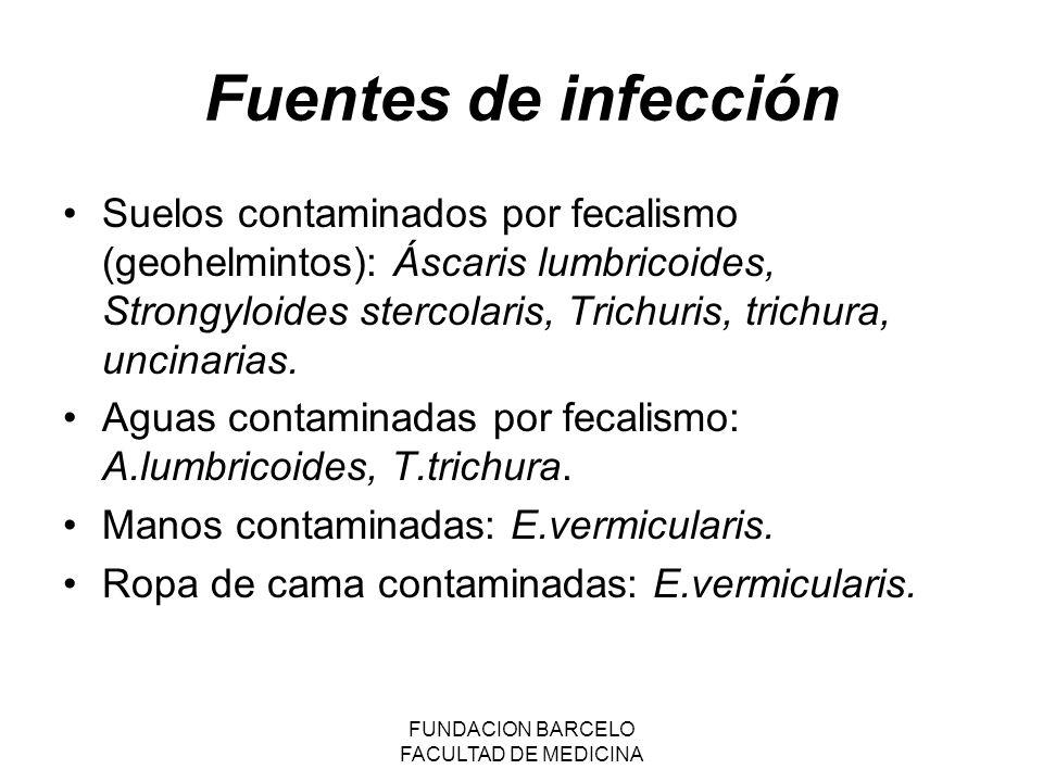 FUNDACION BARCELO FACULTAD DE MEDICINA Vías de infección: Oral: huevo:A.