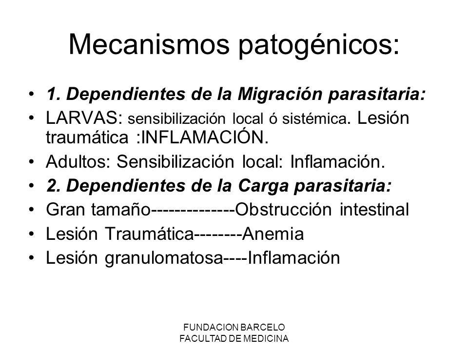 FUNDACION BARCELO FACULTAD DE MEDICINA Mecanismos patogénicos: 1.