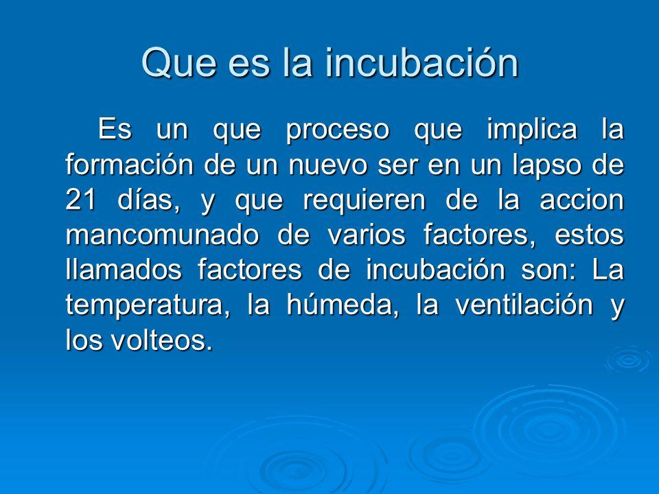 Que es la incubación Es un que proceso que implica la formación de un nuevo ser en un lapso de 21 días, y que requieren de la accion mancomunado de varios factores, estos llamados factores de incubación son: La temperatura, la húmeda, la ventilación y los volteos.