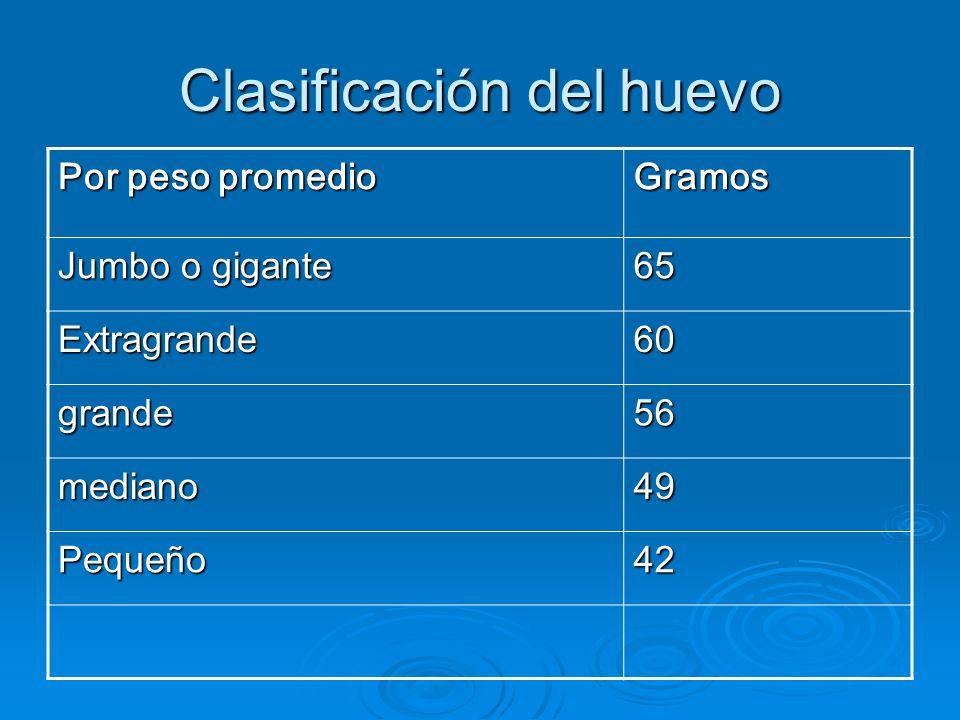 Clasificación del huevo Por peso promedio Gramos Jumbo o gigante 65 Extragrande60 grande56 mediano49 Pequeño42