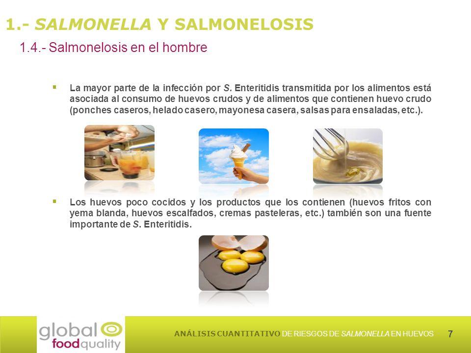 7 ANÁLISIS CUANTITATIVO DE RIESGOS DE SALMONELLA EN HUEVOS 1.4.- Salmonelosis en el hombre 1.- SALMONELLA Y SALMONELOSIS La mayor parte de la infección por S.