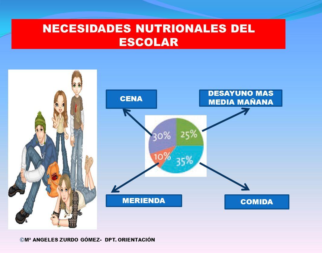NECESIDADES NUTRIONALES DEL ESCOLAR © Mª ANGELES ZURDO GÓMEZ- DPT. ORIENTACIÓN DESAYUNO MAS MEDIA MAÑANA COMIDA CENA MERIENDA