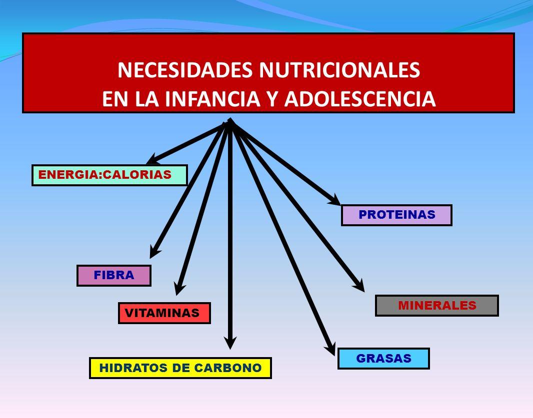 NECESIDADES NUTRICIONALES EN LA INFANCIA Y ADOLESCENCIA HIDRATOS DE CARBONO ENERGIA:CALORIAS PROTEINAS GRASAS VITAMINAS MINERALES FIBRA