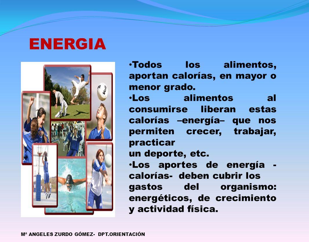 ENERGIA Mª ANGELES ZURDO GÓMEZ- DPT.ORIENTACIÓN Todos los alimentos, aportan calorías, en mayor o menor grado. Los alimentos al consumirse liberan est