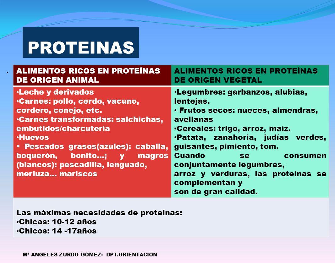 PROTEINAS. Mª ANGELES ZURDO GÓMEZ- DPT.ORIENTACIÓN ALIMENTOS RICOS EN PROTEÍNAS DE ORIGEN ANIMAL ALIMENTOS RICOS EN PROTEÍNAS DE ORIGEN VEGETAL Leche