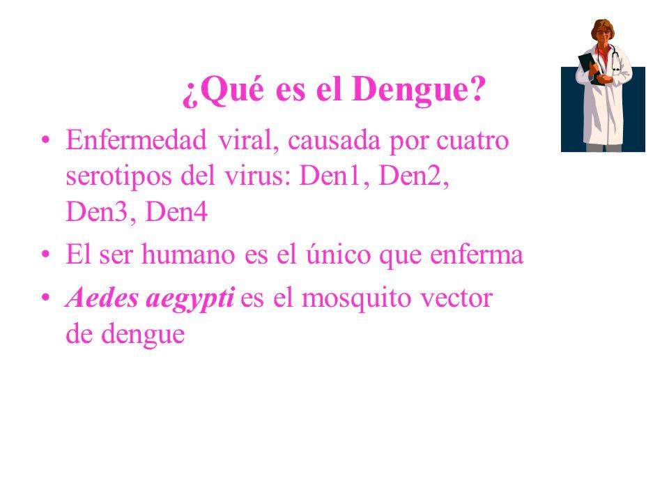 ¿Qué es el Dengue? Enfermedad viral, causada por cuatro serotipos del virus: Den1, Den2, Den3, Den4 El ser humano es el único que enferma Aedes aegypt