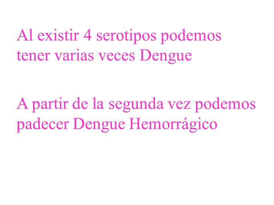 Al existir 4 serotipos podemos tener varias veces Dengue A partir de la segunda vez podemos padecer Dengue Hemorrágico