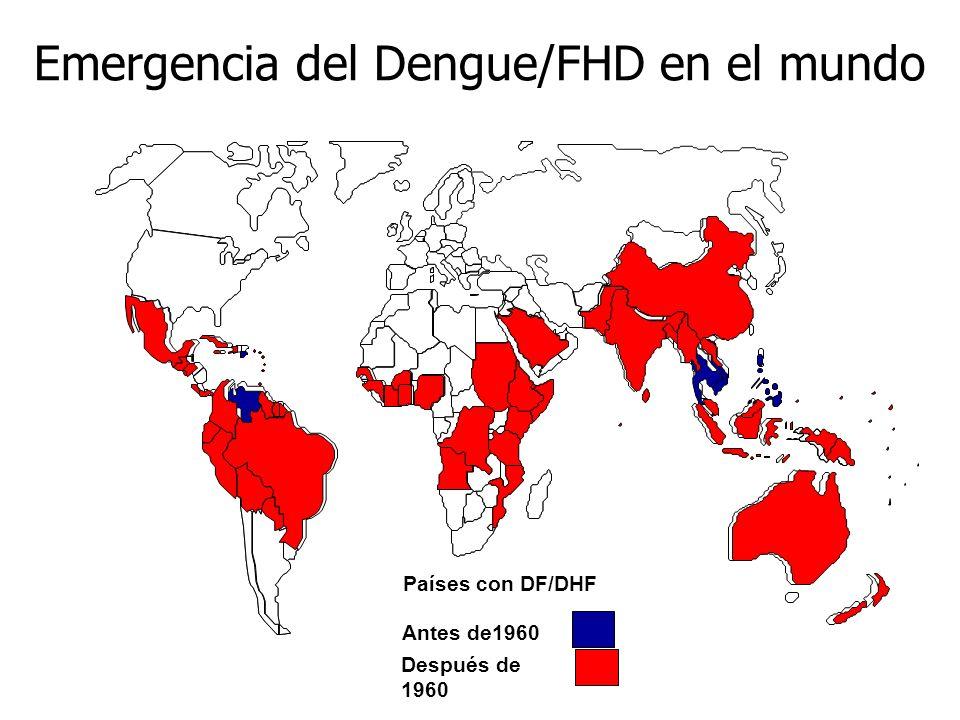Antes de1960 Después de 1960 Emergencia del Dengue/FHD en el mundo