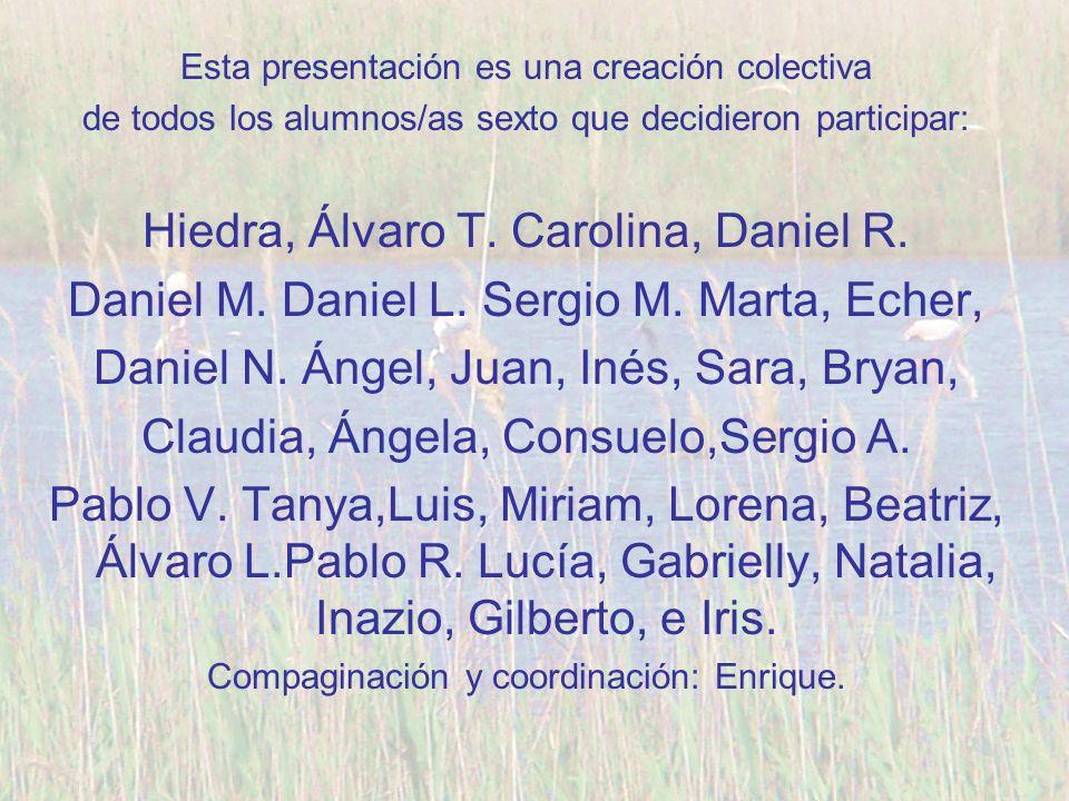 Esta presentación es una creación colectiva de todos los alumnos/as sexto que decidieron participar: Hiedra, Álvaro T. Carolina, Daniel R. Daniel M. D