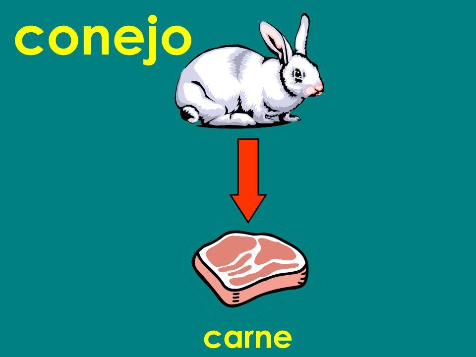 carne conejo