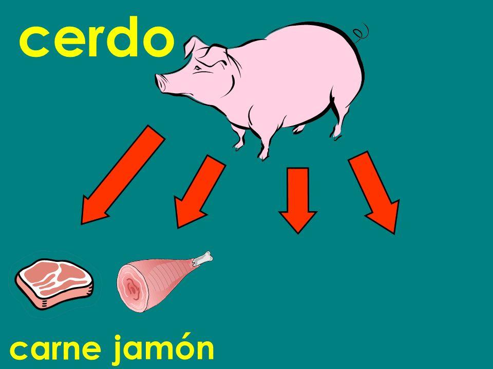 carne cerdo jamón
