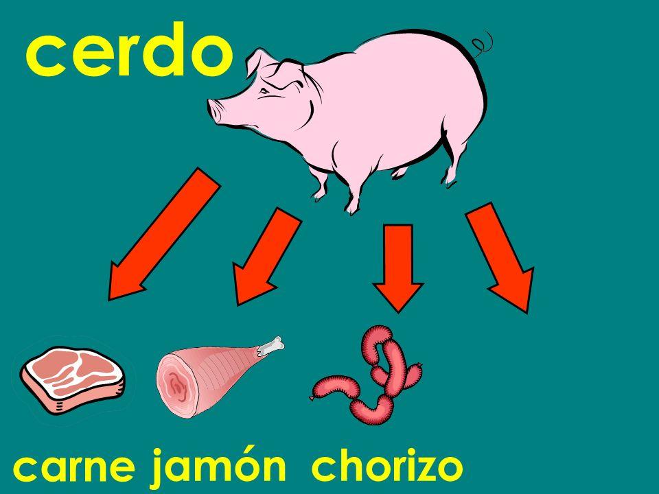 carne cerdo jamónchorizo
