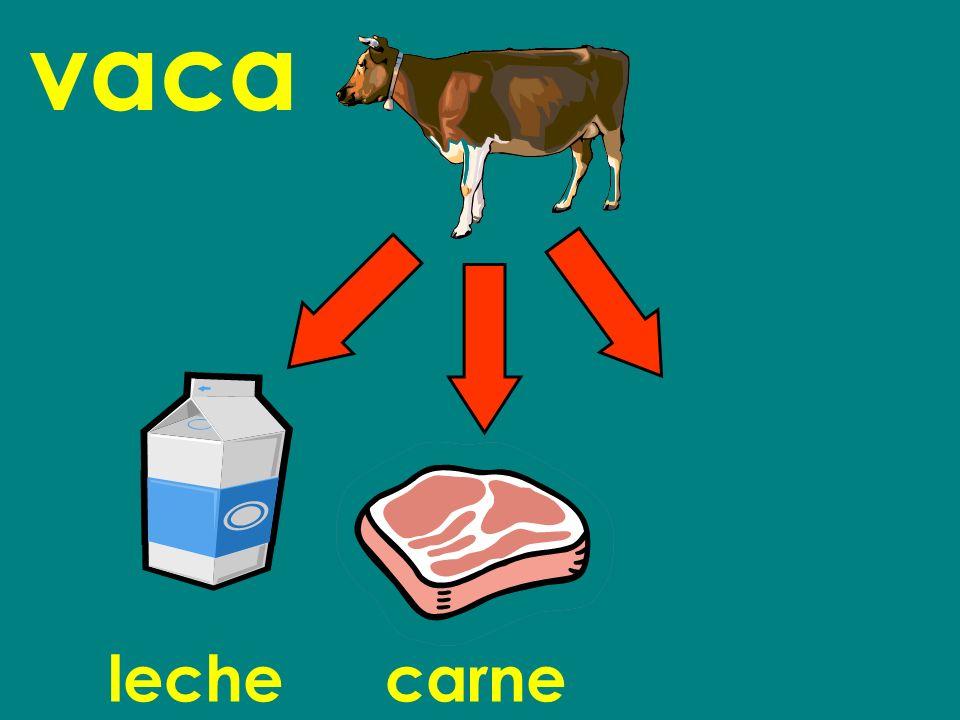 vaca lechecarne
