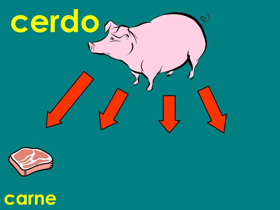 carne cerdo