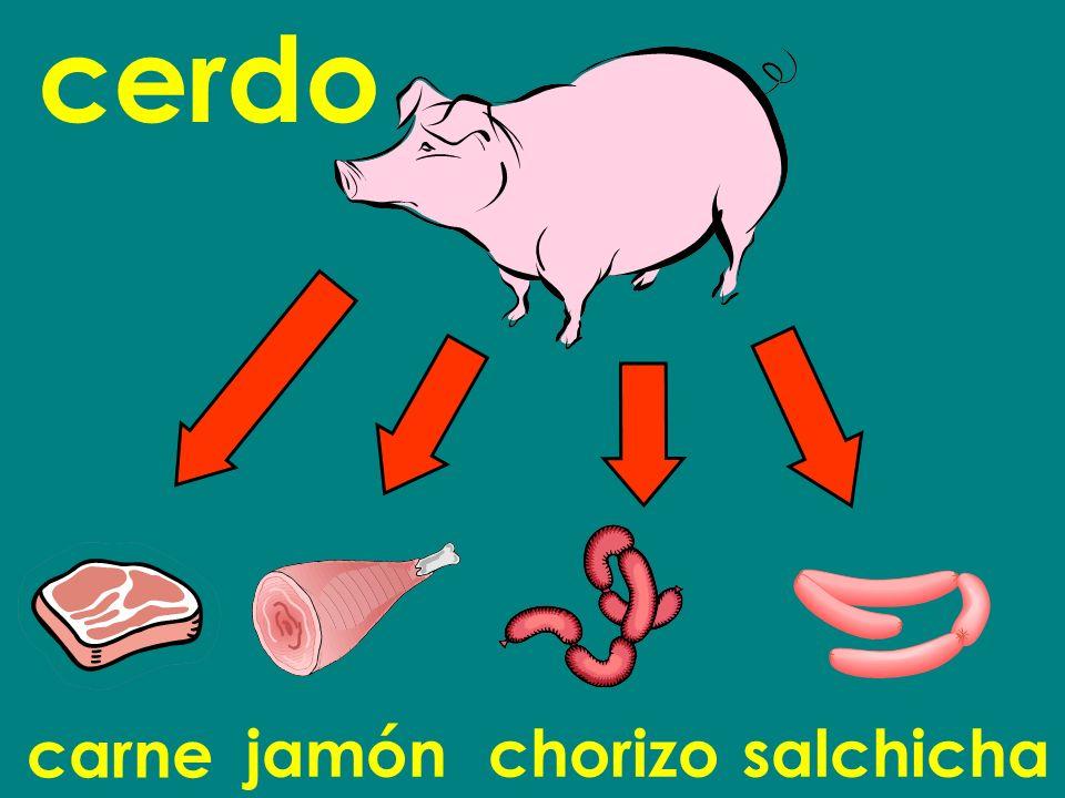 carne cerdo jamónchorizosalchicha