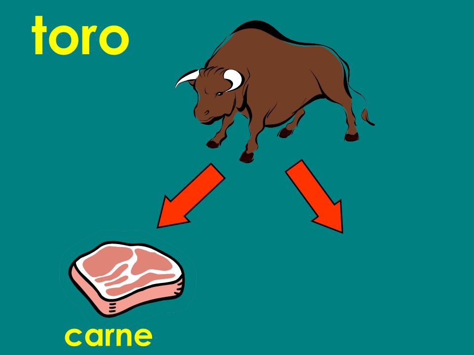 toro carnecuero