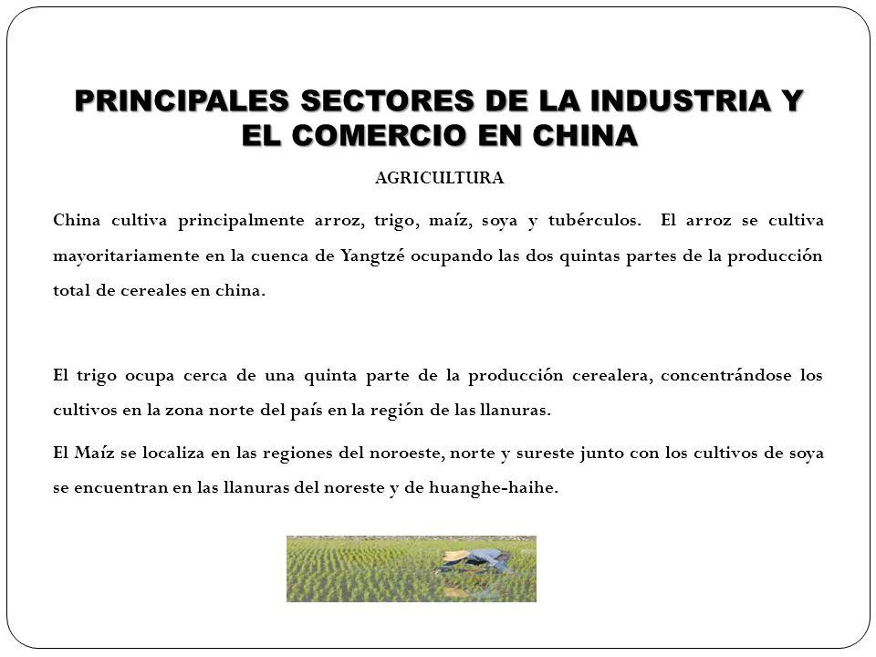 PRINCIPALES SECTORES DE LA INDUSTRIA Y EL COMERCIO EN CHINA AGRICULTURA China cultiva principalmente arroz, trigo, maíz, soya y tubérculos. El arroz s