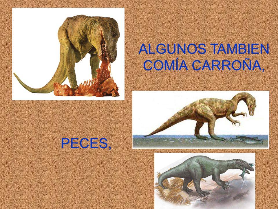 ALGUNOS TAMBIEN COMÍA CARROÑA, PECES,