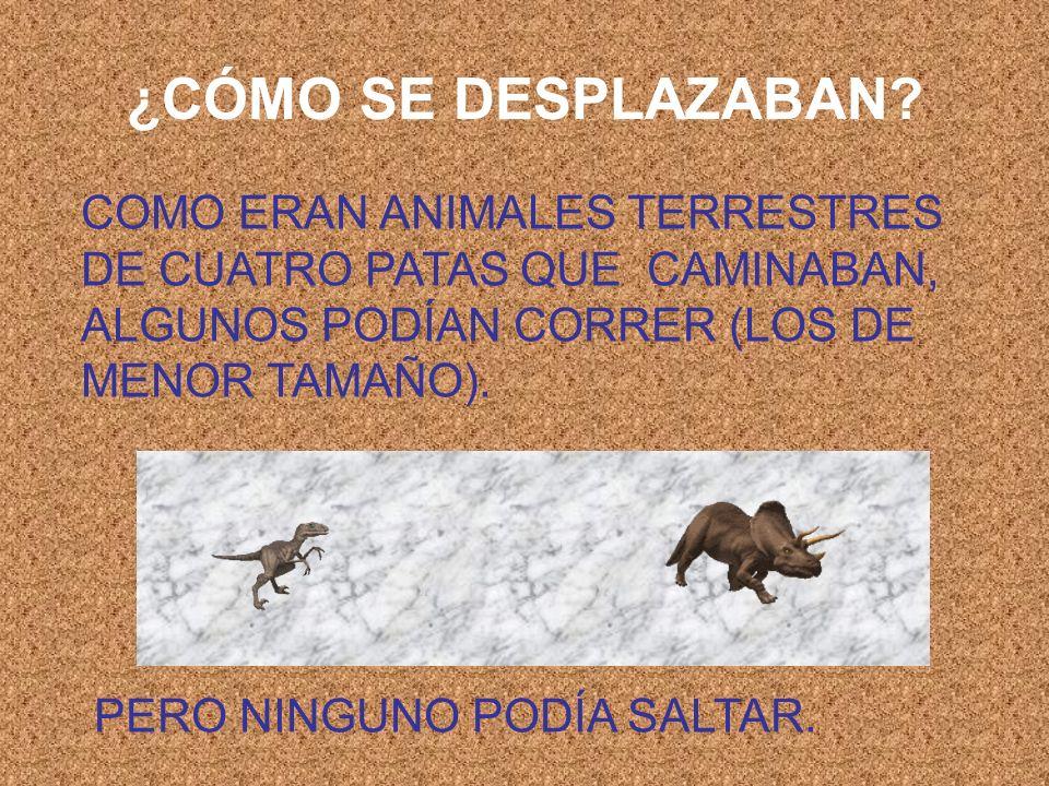¿CÓMO SE DESPLAZABAN? COMO ERAN ANIMALES TERRESTRES DE CUATRO PATAS QUE CAMINABAN, ALGUNOS PODÍAN CORRER (LOS DE MENOR TAMAÑO). PERO NINGUNO PODÍA SAL