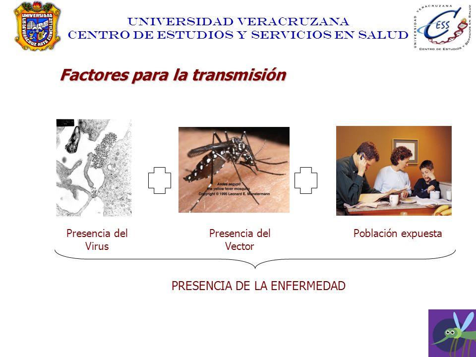 UNIVERSIDAD VERACRUZANA CENTRO DE ESTUDIOS Y SERVICIOS EN SALUD Factores para la transmisión Presencia del Virus Presencia del Vector Población expues