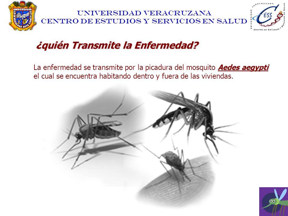 UNIVERSIDAD VERACRUZANA CENTRO DE ESTUDIOS Y SERVICIOS EN SALUD ¿quién Transmite la Enfermedad? Aedes aegypti La enfermedad se transmite por la picadu