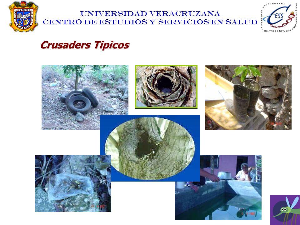 UNIVERSIDAD VERACRUZANA CENTRO DE ESTUDIOS Y SERVICIOS EN SALUD Crusaders Tipicos