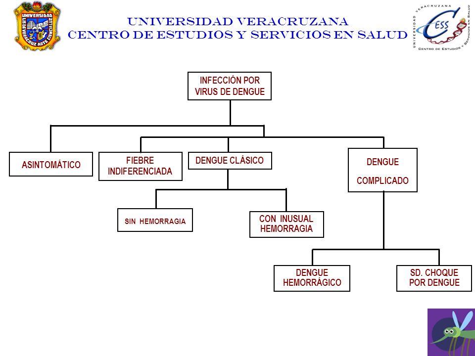UNIVERSIDAD VERACRUZANA CENTRO DE ESTUDIOS Y SERVICIOS EN SALUD INFECCIÓN POR VIRUS DE DENGUE ASINTOMÁTICO FIEBRE INDIFERENCIADA DENGUE CLÁSICO DENGUE