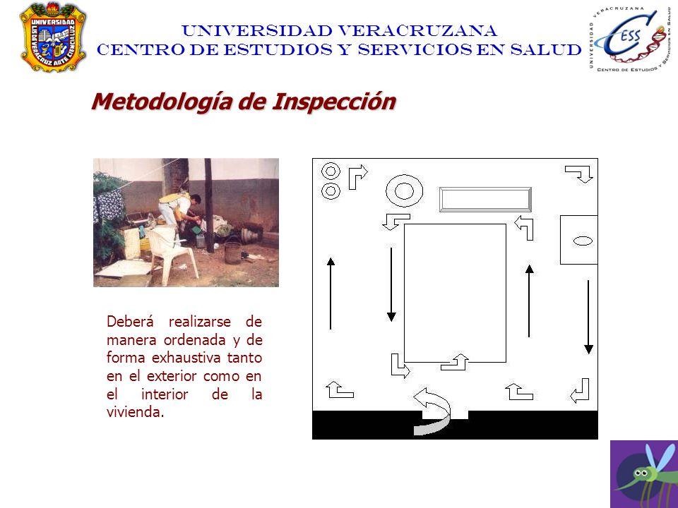 UNIVERSIDAD VERACRUZANA CENTRO DE ESTUDIOS Y SERVICIOS EN SALUD Metodología de Inspección Deberá realizarse de manera ordenada y de forma exhaustiva t